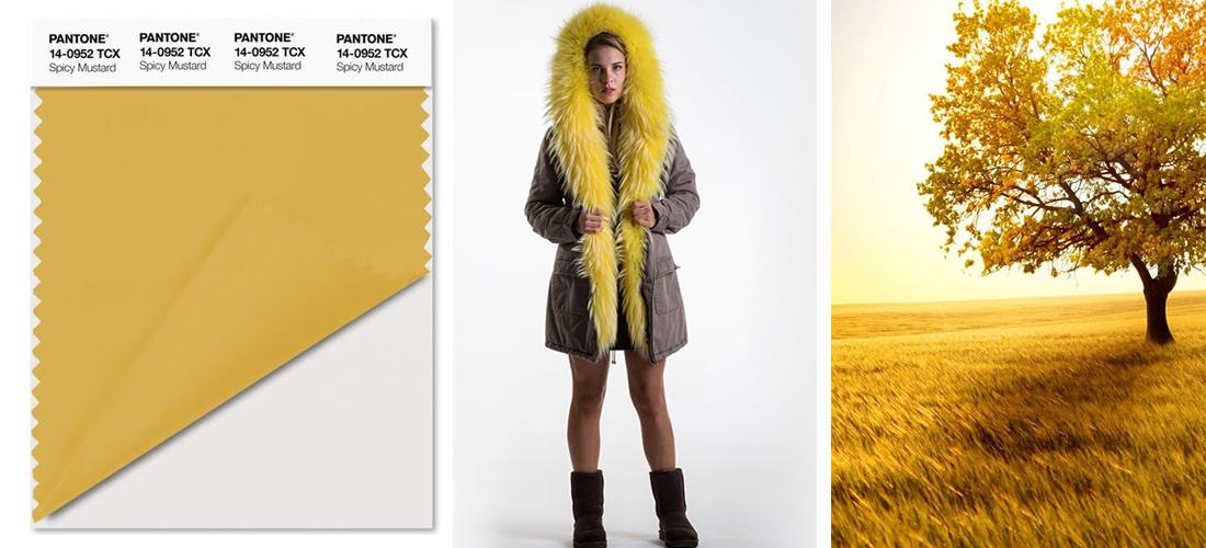 outlet store sale 71168 18643 I colori Pantone moda dell'autunno-inverno 2016-2017 ...